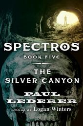 The Silver Canyon