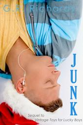 Junk: A Gay Transgender Holiday Romance