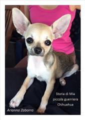 Storia di Mia....piccola guerriera Chihuahua