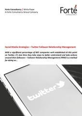 Social Media Strategies – Twitter Follower Relationship Management