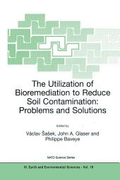 The Utilization of Bioremediation to Reduce Soil Contamination: Problems and Solutions