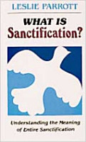What Is Sanctification  PDF