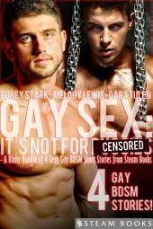 Gay Sex: It's Not For... - A Kinky Bundle of 4 Sexy Gay BDSM Short Stories from Steam Books