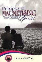 Principles of Magnetising Your Divine Spouse