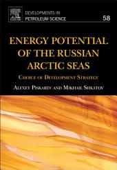Energy Potential of the Russian Arctic Seas: Choice of Development Strategy