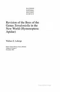 Revision of the Bees of the Genus Tetraloniella in the New World   Hymenoptera  Apidae  PDF