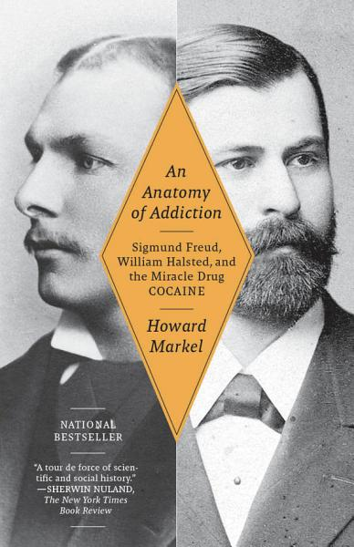 Download An Anatomy of Addiction Book