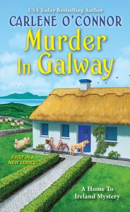 Murder in Galway Book