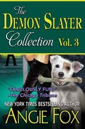 Accidental Demon Slayer Boxed Set, Vol 3