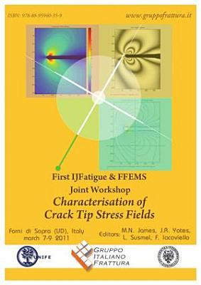 Proceedings of  First IJFatigue   FFEMS Joint Workshop  PDF