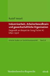 Industriearbeit, Arbeiterbewußtsein und gewerkschaftliche Organisation: Dargestellt am Beispiel der Georg Fischer AG (1890-1930)