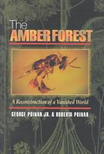 The Amber Forest