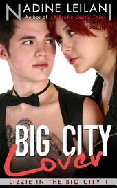 Big City Lover (Falling for Stranger Romance)