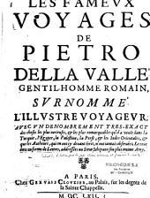 Les fameux voyages de Pietro della Valle, ...
