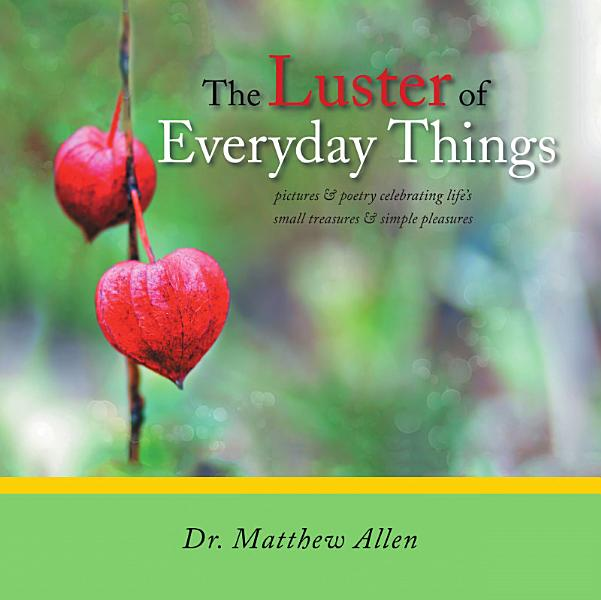 Download The Luster of Everyday Things Book