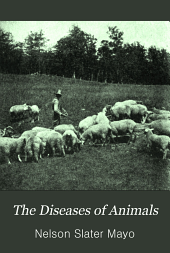 Diseases of Animals: A Book of Brief & Popular Advice on the Care & the Common Ailments of Farm Animals