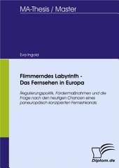 Flimmerndes Labyrinth - Das Fernsehen in Europa: Regulierungspolitik, Fördermaßnahmen und die Frage nach den heutigen Chancen eines paneuropäisch konzipierten Fernsehkanals
