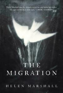The Migration Book
