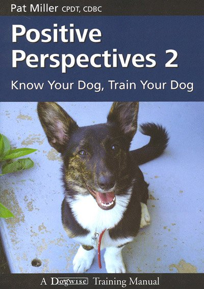 Download Positive Perspectives 2 Book