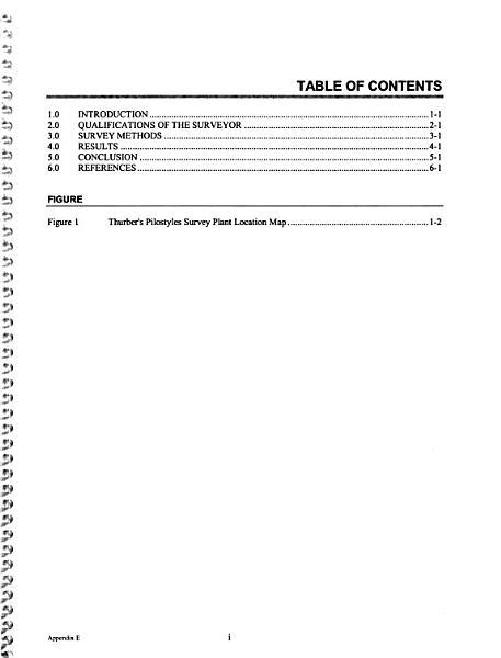 Wellton Mohawk Generating Facility