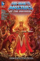 He-Man and the Masters of the Universe Vol. 5: The Blood of Grayskull: Volume 5