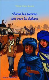 Parmi les pierres, une rose du Sahara