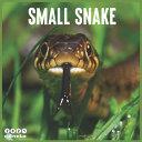 Small Snake 2021 Calendar