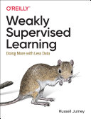 Weakly Supervised Learning PDF