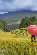 Standing in a Terraced Rice Field with a Red Umbrella Journal PDF