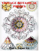Vintage Botanical Prints - Vintage Botanical Illustration, Vintage Nature Prints, Vintage Botanical Wall Art, Vintage Home Decor, Instant Wall Art Botanical Prints
