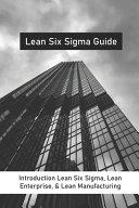 Lean Six Sigma Guide PDF