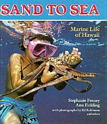 Sand To Sea Book PDF