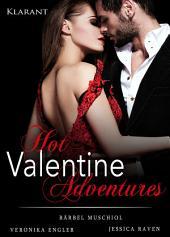 Hot Valentine Adventures. Erotischer Roman