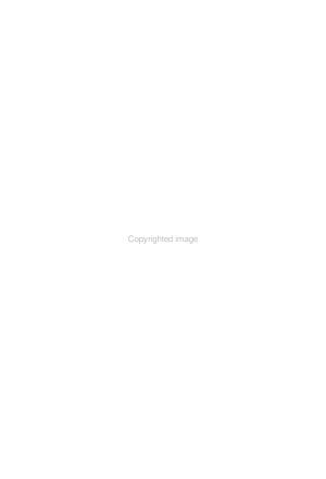 The Image of the Prophet Jeremiah in the  so called Baruch Biography  and Cognate Prose texts PDF