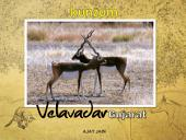 Velavadar - Gujarat, India