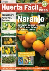 Huerta Fácil en casa21 - Cultiva desde pequeños a grandes espacios: Curso visual y práctico