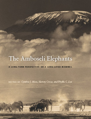 The Amboseli Elephants PDF