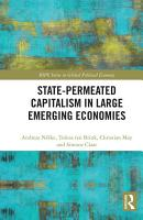 State permeated Capitalism in Large Emerging Economies PDF