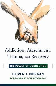 Addiction  Attachment  Trauma and Recovery  The Power of Connection  Norton Series on Interpersonal Neurobiology