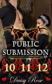 "Public Submission 10 - 12: Books 10 - 12 of ""Public Submission"""