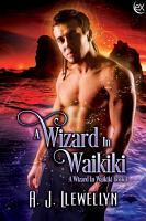 A Wizard in Waikiki PDF