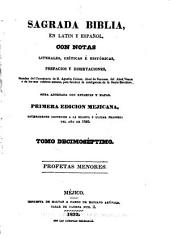 Sagrada Biblia: en latin y español, con notas literales, críticas é históricas, prefacios y disertaciones, sacadas, Volumen 17