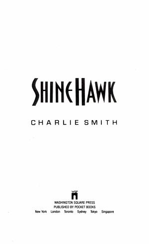 Shine Hawk