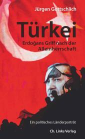 Türkei: Erdogans Griff nach der Alleinherrschaft