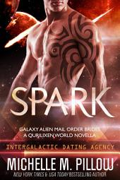 Spark: Galaxy Alien Mail Order Brides #1