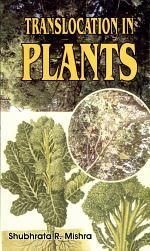 Translocation in Plants