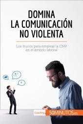 Domina la Comunicación No Violenta: Los trucos para emplear la CNV en el ámbito laboral