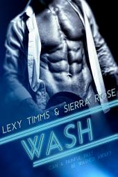 Wash: Contemporary Billionaire Romance