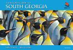 A Visitor's Guide to South Georgia
