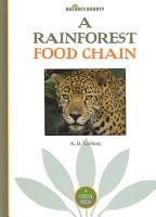 A Rainforest Food Chain PDF